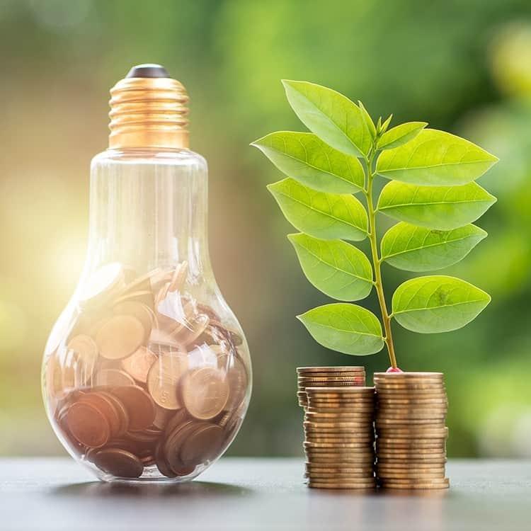 Geld besparen met de duurzame producten van PAPER & BOO