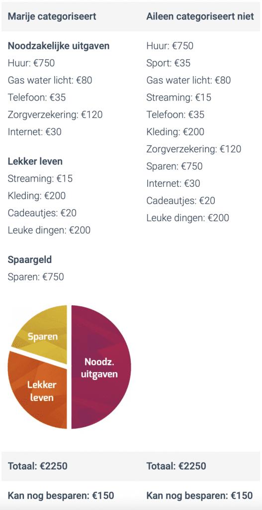 taartdiagram uitgaven categoriseren